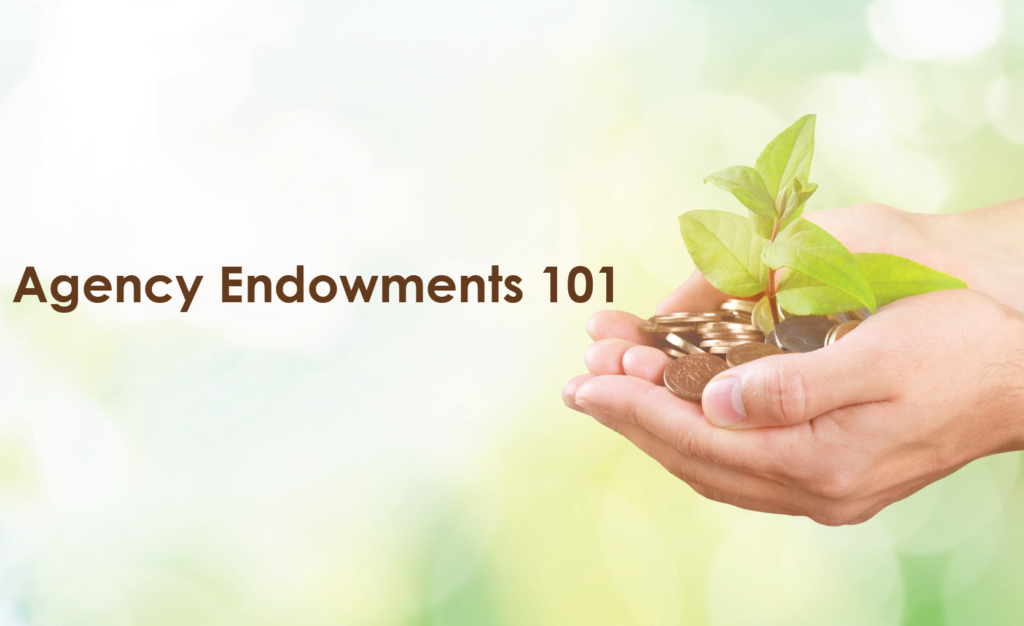 Agency Endowments 101